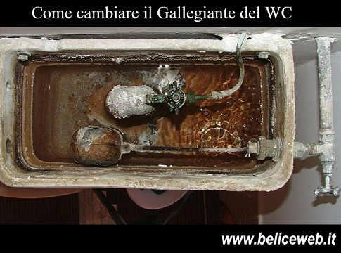 Cambiare galleggiante wc
